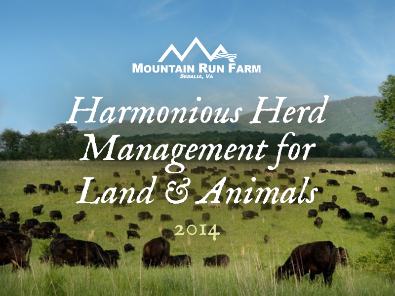 Harmonious Herd Management for Land and Animals (Presentation)